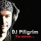 Dj piligrim - Мне не жить без тебя